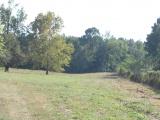 Anacoco land for sale,  1643 Good Hope Rd., Anacoco LA - $229,000