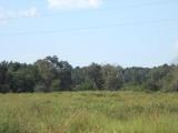 Anacoco land for sale,  1798 Good Hope Rd., Anacoco LA - $199,000