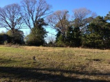 DeRidder land for sale,  19849 LAKE CHARLES HWY, DeRidder LA - $1,000,000