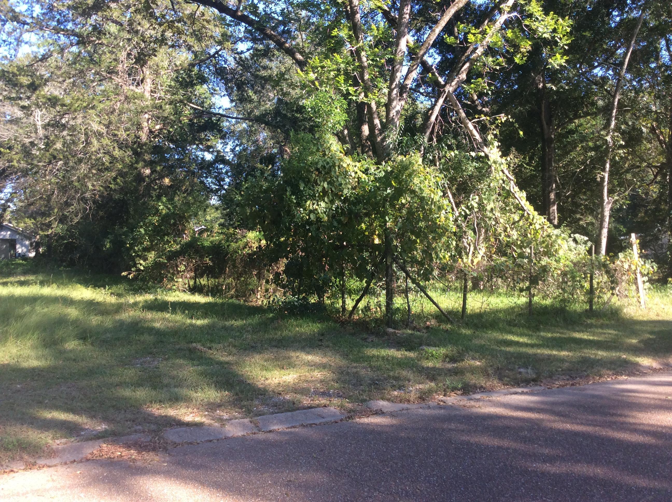 DeRidder land for sale,  203 WILSON, DeRidder LA - $10,000
