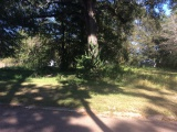 DeRidder land for sale,  203 WILSON, DeRidder LA - $22,500