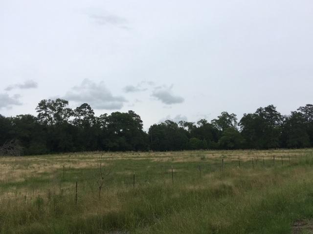 Rosepine land for sale,  3918 Hwy 1146, Rosepine LA - $201,000