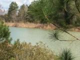 DeRidder land for sale,  4936 HWY 171, DeRidder LA - $99,500