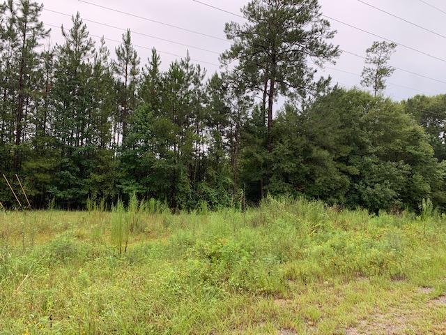 Leesville land for sale,  BAILEY RD., Leesville LA - $105,000