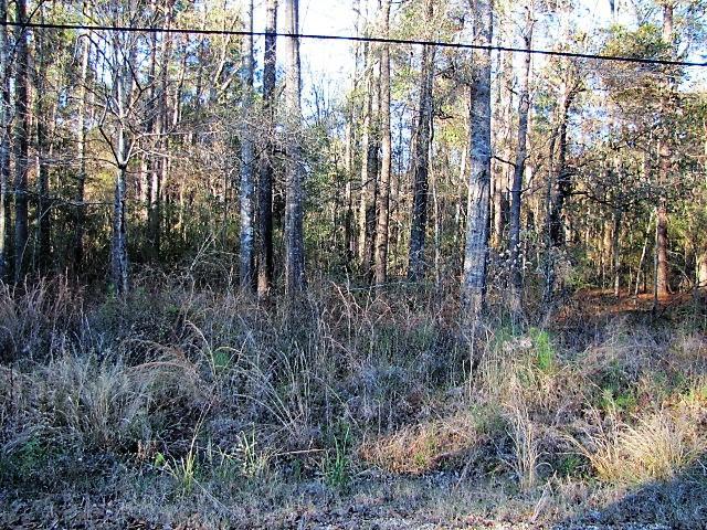 DeRidder land for sale,  Ben Elston Rd, DeRidder LA - $133,000