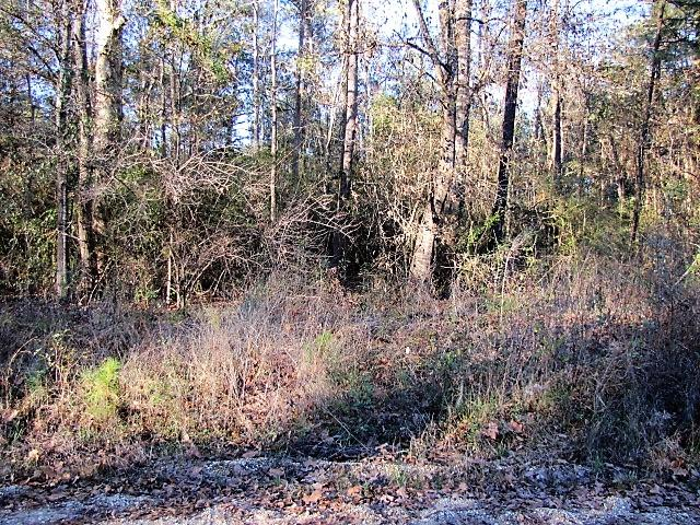 DeRidder land for sale,  Ben Elston Rd, DeRidder LA - $133,000