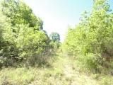 DeRidder land for sale,  Bennie Derrough, TBD, DeRidder LA - $61,000