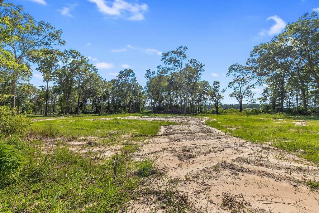 Ragley land for sale,  Bob Long Road, Ragley LA - $27,500