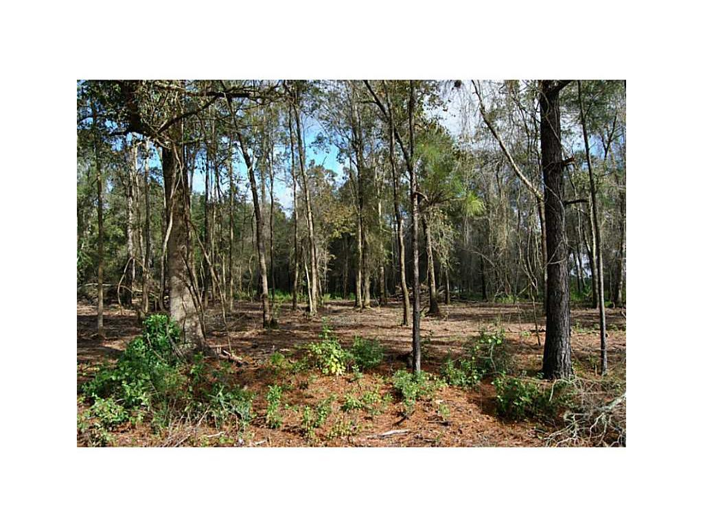 land for sale,  Briar Marsh Road,  LA - $33,000