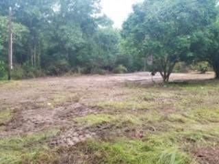 DeRidder land for sale,  Clayton Parker Loop, DeRidder LA - $49,900