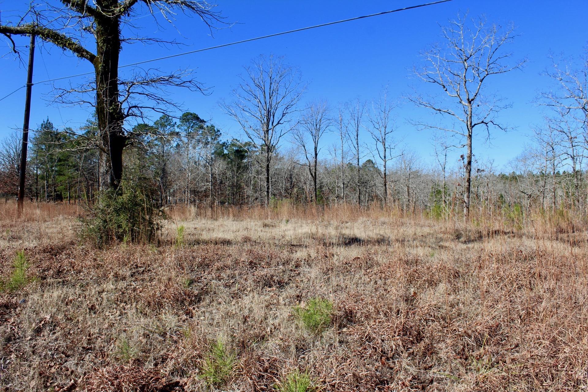 Anacoco land for sale,  Cold Springs Loop, Anacoco LA - $34,900