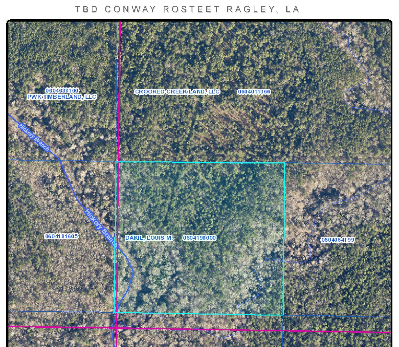 Ragley land for sale,  Conway Rosteet, Ragley LA - $119,950