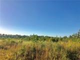DeQuincy land for sale,  Edgerly Rd, DeQuincy LA - $68,000