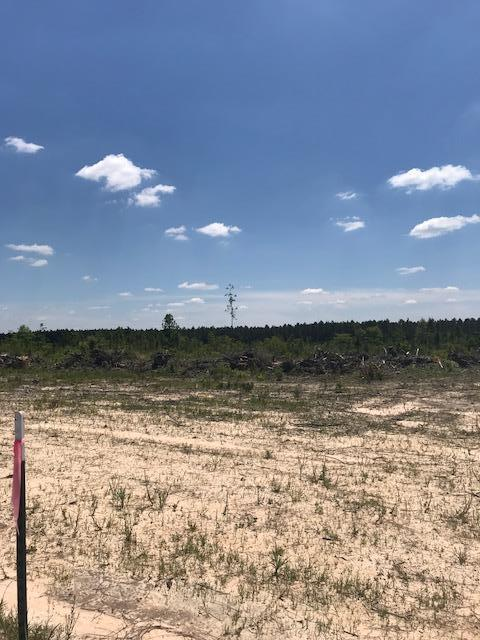 DeRidder land for sale,  Elengton Rd, DeRidder LA - $38,500