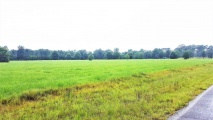 DeRidder land for sale,  Graybow Rd, DeRidder LA - $239,500
