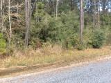 Longville land for sale,  HWY 171, Longville LA - $96,000