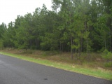 Merryville land for sale,  HWY 190 WEST, Merryville LA - $175,000