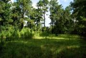 Dry Creek land for sale,  Hiter Rd, Dry Creek LA - $63,000