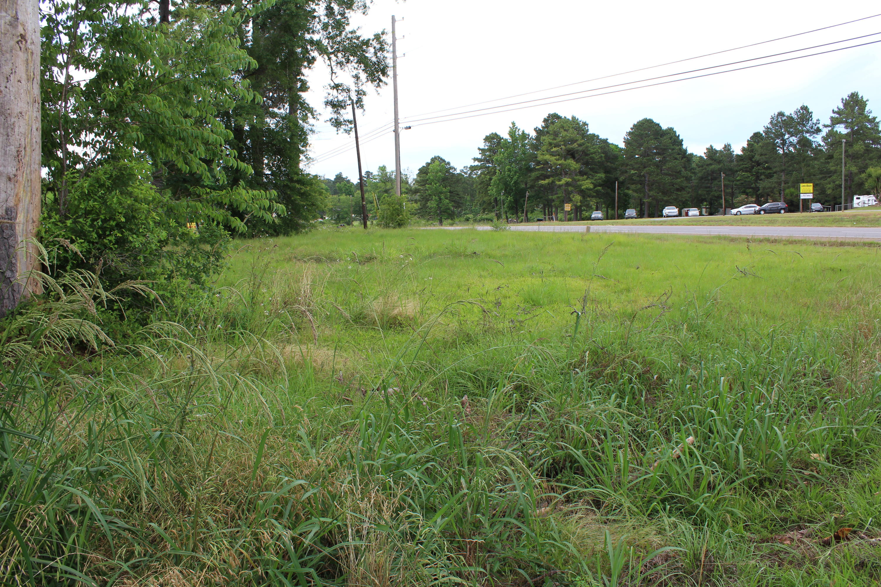 DeRidder land for sale,  Hwy 171S, Golden Acres, DeRidder LA - $30,000