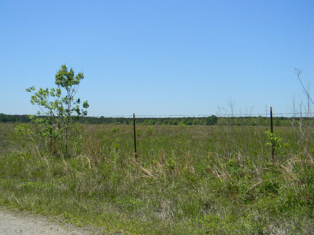 DeRidder land for sale,  Jim West Rd and Grantham Rd, DeRidder LA - $188,000