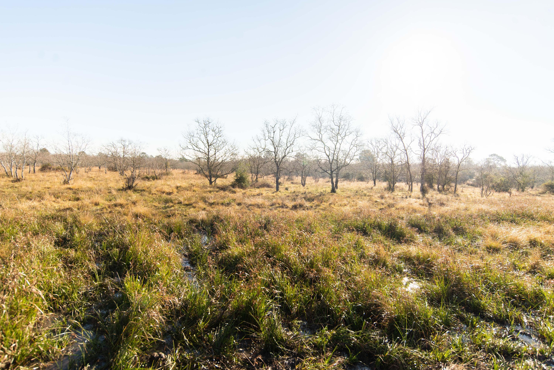 land for sale,  John Brannon Rd,  LA - $159,000