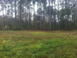 DeRidder land for sale,  Katham, DeRidder LA - $26,000