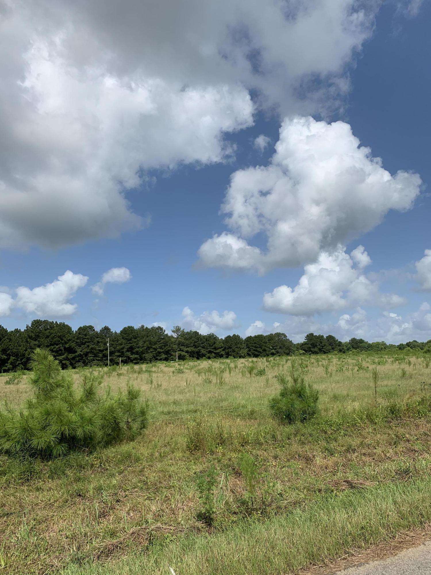 DeRidder land for sale,  LOCKHART CUTOFF  LOT 2, DeRidder LA - $29,900