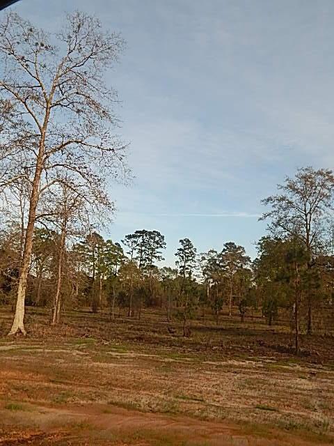 DeRidder land for sale,  LOT 16 RIVER OAKS S/D, DeRidder LA - $28,900