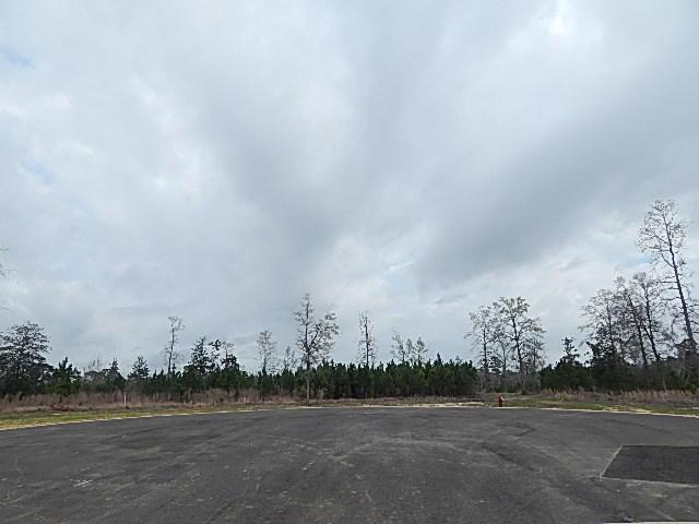 DeRidder land for sale,  LOT 17 RIVER OAKS S/D, DeRidder LA - $49,900