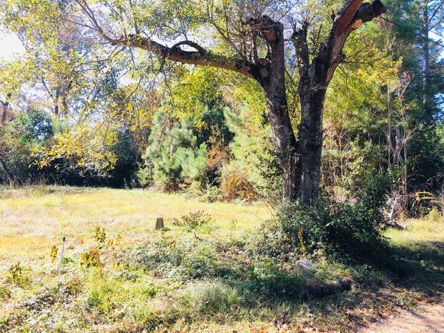 DeRidder land for sale,  Lewis Ave, DeRidder LA - $25,000