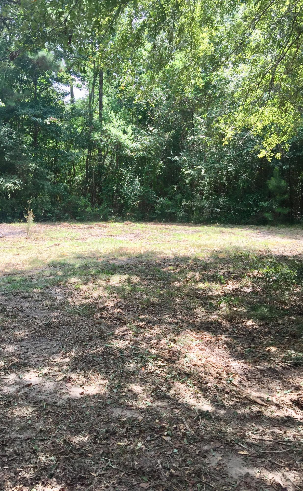 DeRidder land for sale,  Lewis Cemetery/Tommy Lindsey, DeRidder LA - $74,800