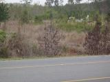 Leesville land for sale,  Lot 1  Entrance, Leesville LA - $125,000