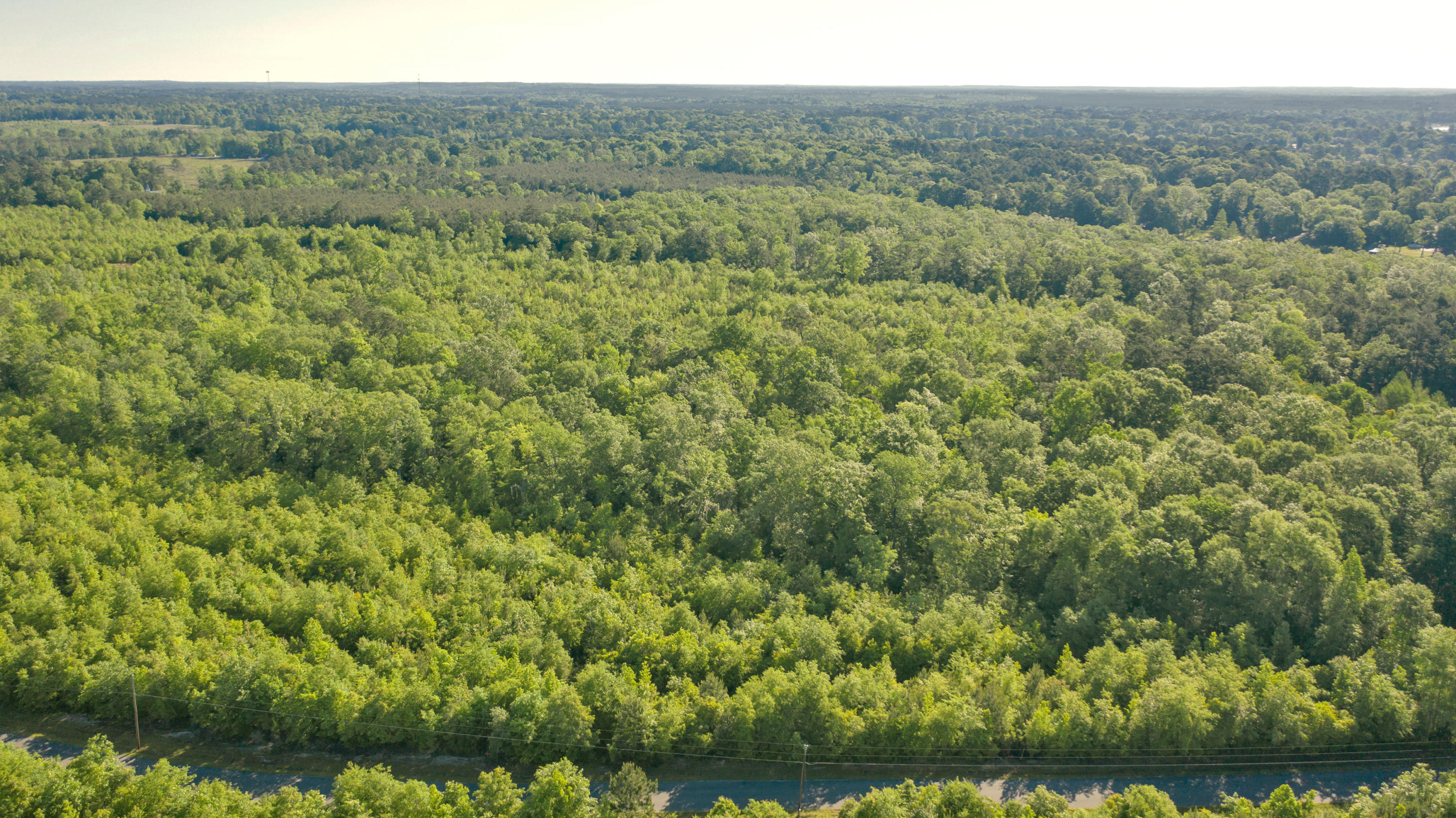 Anacoco land for sale,  Lot 15 Holly Estates Road, Anacoco LA - $38,000