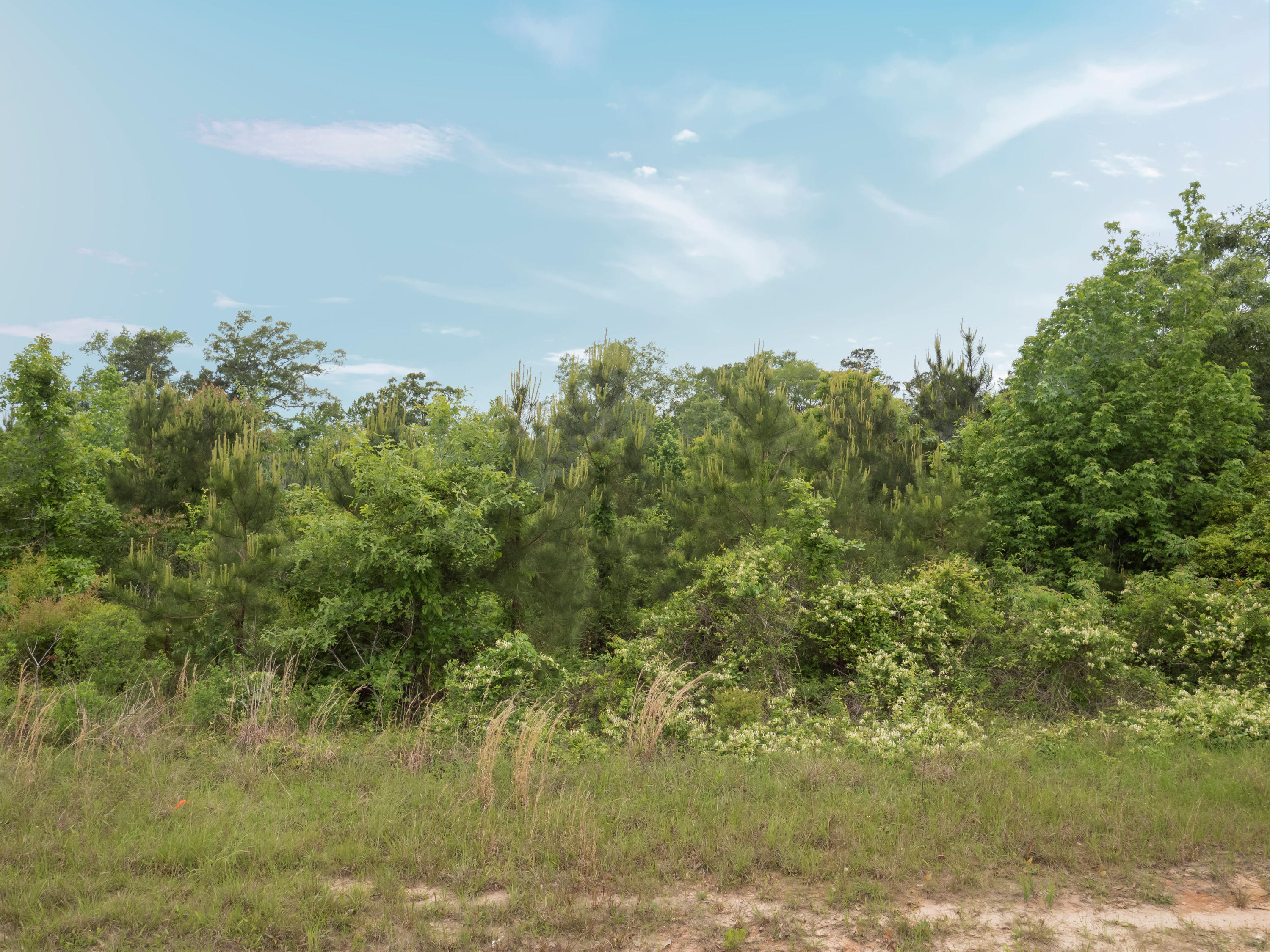 Anacoco land for sale,  Lot 3 Holly Estates Road, Anacoco LA - $75,000