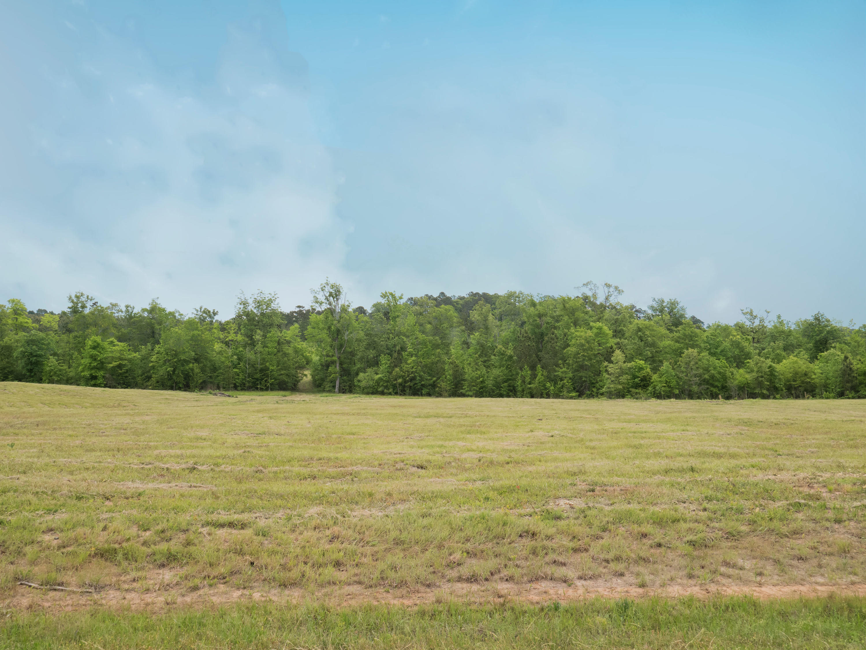 Anacoco land for sale,  Lot 7 Holly Estates Road, Anacoco LA - $45,000