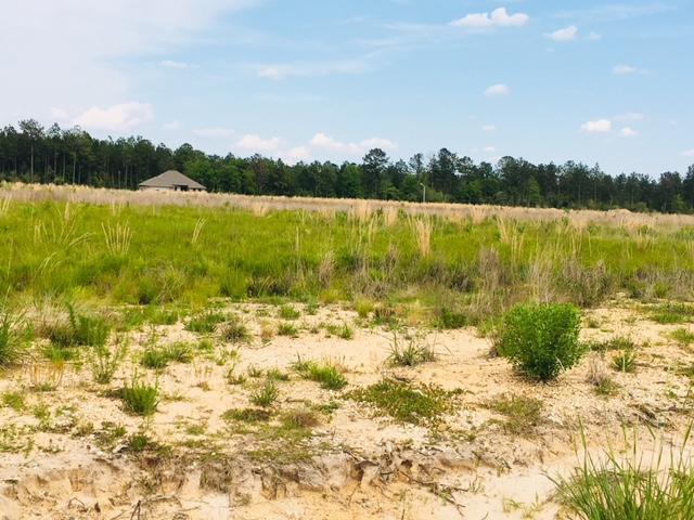 Longville land for sale,  Midkiff Rd, Longville LA - $29,000