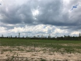 DeQuincy land for sale,  Miller Rd, DeQuincy LA - $60,900