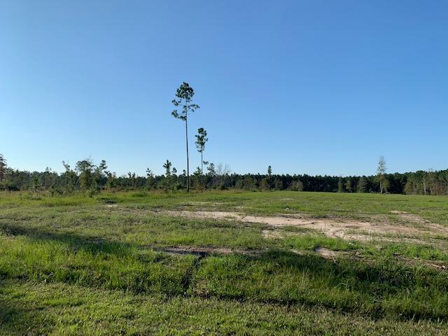 Longville land for sale,  Phillips, Longville LA - $150,000