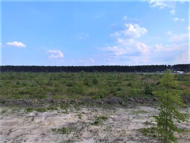 DeRidder land for sale,  Rae Rd, DeRidder LA - $59,000
