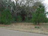 DeRidder land for sale,  Rainwater Rd, DeRidder LA - $70,000