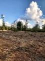 DeQuincy land for sale,  Rte 66 Rd, DeQuincy LA - $125,000