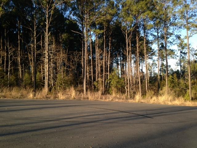 Leesville land for sale,  Saddlewood Estates, Lot 49, Leesville LA - $16,500