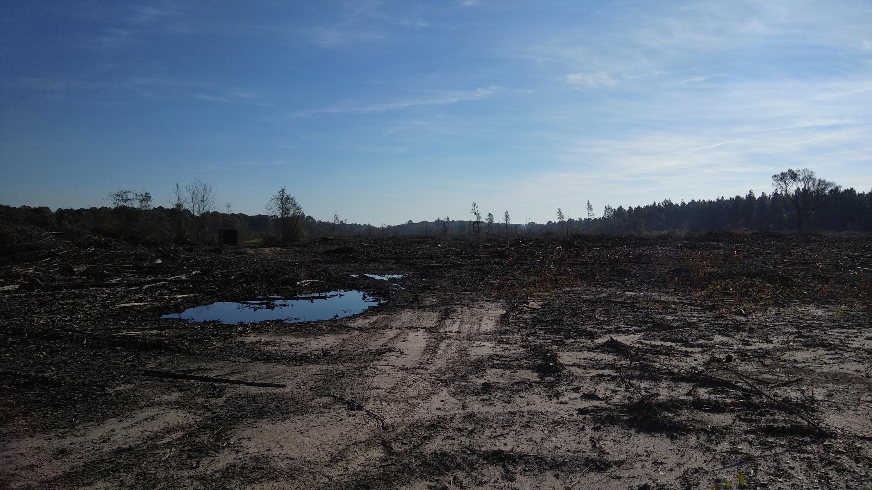 DeRidder land for sale,  Schutez, DeRidder LA - $208,000
