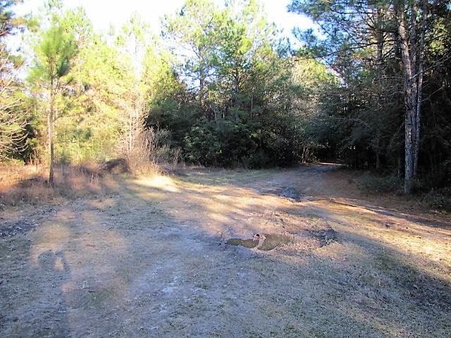 Merryville land for sale,  Stanley Hebert Rd, Merryville LA - $35,000