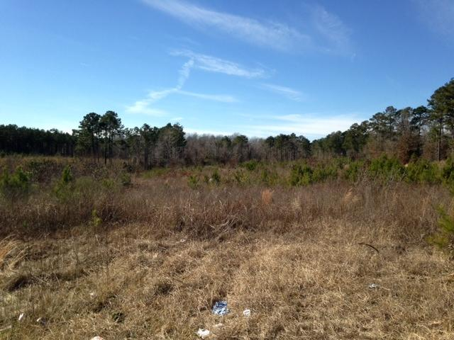 Leesville land for sale,  TBD (Lot 11) Martin OBanion Rd, Leesville LA - $14,500