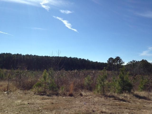 Leesville land for sale,  TBD (Lot 3) Section Line Rd, Leesville LA - $14,500