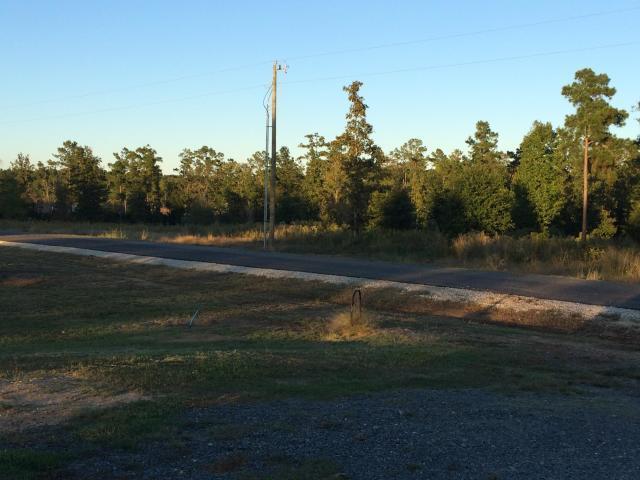 Leesville land for sale,  TBD Abigail Lane, Lot 6, Leesville LA - $28,900