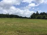 DeRidder land for sale,  TBD Butler Rd., DeRidder LA - $67,500