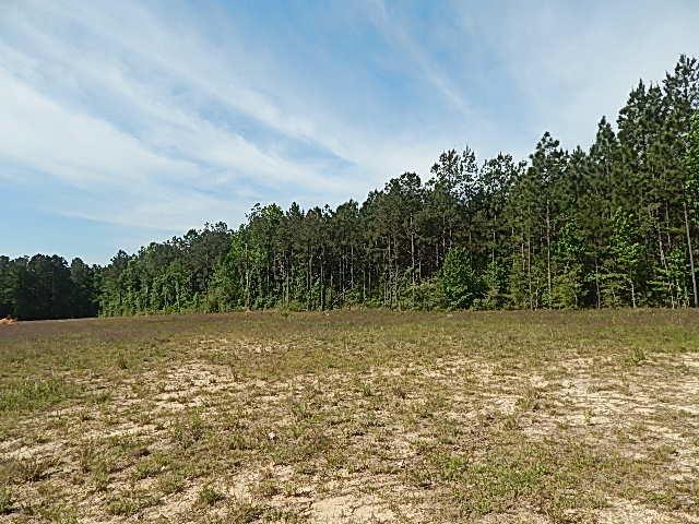 DeRidder land for sale,  TBD CHINQUAPIN LANE, DeRidder LA - $57,900