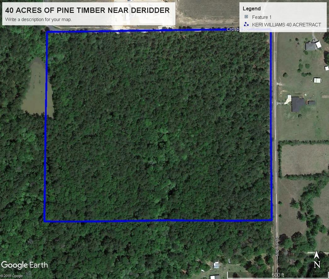 DeRidder land for sale,  TBD CROSBY & MORRIS RD, DeRidder LA - $196,000